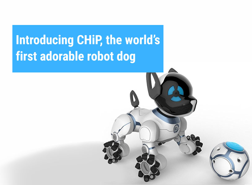 Introducing CHiP, the world's first adorable robot dog